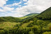 Nature in the mountains, beautiful scenery, beautiful mountain scenery, the Carpathian Mountains, a  poster