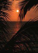 Sun Reflection