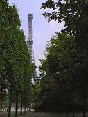 Eiffel - Trees