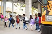 Elementary school kids arrive at school from the school bus poster
