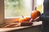 Attractive Woman Is Decorating A Window With Pumpkins And Corncob, Autumn Window Decoration poster