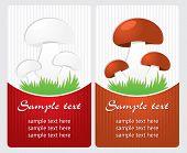 Mushrooms. Vector label