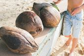 Natural Food Of Thailand Brown Coconut Or Cocos Nucifera L. In Stiff Crust On Seashore Fallen From P poster