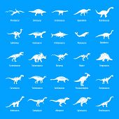 Dinosaur Types Signed Name Icons Set. Simple Illustration Of 25 Dinosaur Types Signed Name Vector Ic poster