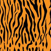 A seamless tiger stripe vector illustration which can be tiled