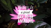 Inspirational Quote-today Is A Great Day To Be Amazing poster
