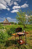 Picnic BBQ in a garden