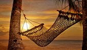 picture of beach sunset  - Sunset Hammock at Beach Shore - JPG