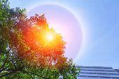 Fantastic Beautiful Sun Halo Phenomenon In The City poster