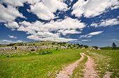 Beautiful summer road and meadow on Ai-Petri mountain in Crimea Ukraine