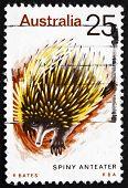 Postage stamp Australia 1974 Spiny Anteater, Echidna