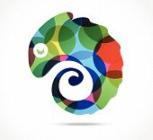 picture of chameleon  - Vector Illustration of Chameleon abstract Business icon  - JPG