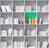 foto of partition  - white bookshelves with one color partition    - JPG
