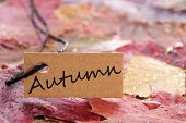 A Label With Autumn On It
