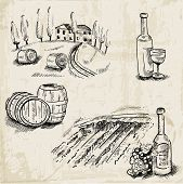 Wine, Wine making and Vineyard - hand drawn illustration - in vector