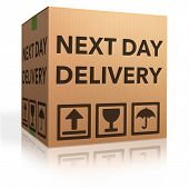 next day delivery urgent package shipment deliver order cardboard box