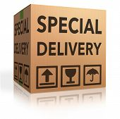 special delivery important shipment special package sending express shipping cardboard box from onli