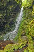 Falls In A Mossy Canyon