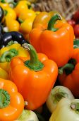 Assorted color of bell peppers close up