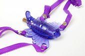 Sey Toy - Purple Butterfly Closeup