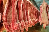 stock photo of fuel economy  - Fresh meat pigs in a cold cut factory - JPG