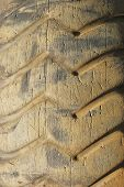 Old Tractor Tires