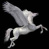 stock photo of pegasus  - A magical white Pegasus spreads its wings and flies up into the sky - JPG