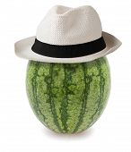 Watermelon Whit Hat