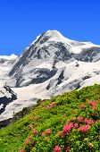Mount Lyscamm - Swiss alps