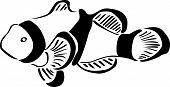 Happy Clown fish Tattoo