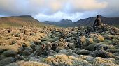 moss-covered lava fields