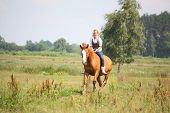 stock photo of bareback  - Beautiful blonde woman riding horse bareback and without bridle