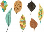Collection of leaves. Vector