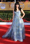 LOS ANGELES - JAN 27:  Zuleikha Robinson arrives to the SAG Awards 2013  on January 27, 2013 in Los Angeles, CA