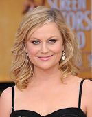 LOS ANGELES - JAN 27:  Amy Poehler arrives to the SAG Awards 2013  on January 27, 2013 in Los Angeles, CA