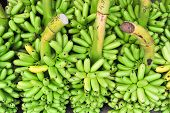 Bunch Of Green Bananas On Floor In Market For Sell