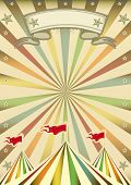 A multicolor circus background with sunbeams for you