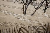The Famous Dune Of Pyla Fences, The Highest Sand Dune In Europe