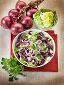 mixed salad with red cabbage lettuce and onions