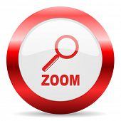 zoom glossy web icon