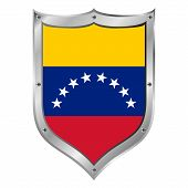 Venezuela Flag Button.