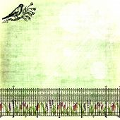 pic of bird fence  - grungy green with ironwork fence - JPG