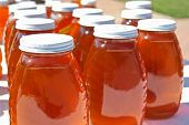 rows of honey jars