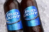 Bud Light Bottles On Ice