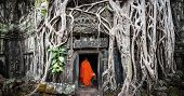 Monk in Angkor Wat Cambodia. Ta Prohm Khmer ancient Buddhist temple in jungle forest. Famous landmar
