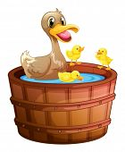 Illustration of the ducks taking a bath at the bathtub on a white background