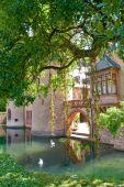 Swan Lake Castle