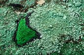 Green Chemical Waste 5