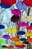 Multicolored umbrellas up in the sky. Rainbow Colors.