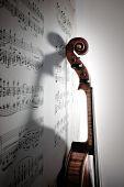 Shadow Of Violin